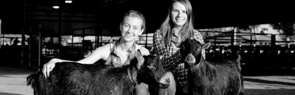girls w/ goats